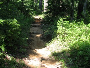 Mt Ray Trail repaired
