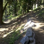 Lots of awesome trail design on the PCT
