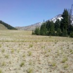 Wickiup Plain